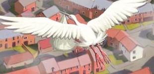 Swinton 'Stork' Storyboard
